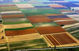 The Beauty of Abundance-Erdut-Slavonija Province ... Photo taken from ... https://edition.cnn.com/travel/gallery/beautiful-croatia/index.html
